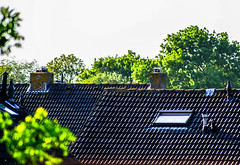 Roofs and chimneys . . (Eduard van Bergen) Tags: pictures life camera old family autumn trees houses winter boy summer woman dog hot cold castle home glass girl birds lady cat work lens ed mirror living town photo office reflex spring crazy still warm foto village grandmother bokeh familie kachel daughter nuts husband son days roofs business stove photograph wife suburbs normal granddad patchwork dslr ccd job daft growingup chimneys gentleman coocoo hause reminiscing huizen hubbie objective thoughs sonyalpha200 sonysal55200