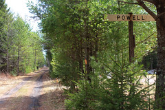 Powell (view2share) Tags: railroad travel trees abandoned station sign pine rural train spring transport railway rr trains grade trail abandon transportation signage april marker powell signboard abandonment freight hamlet northwood springtime railroads northwoods outpost 2016 northernwisconsin stationsign cnw chicagonorthwestern rring april2016 deansauvola april162016