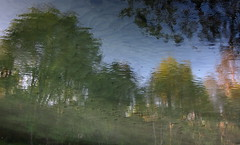 Aqua Railer (andressolo) Tags: trees distortion color reflection water ro reflections river agua colours distorted reflected reflect reflejo ripples reflejos distortions