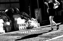 Street Fragments #194 - Shinjuku Labyrinth (Yoshi T. (kagirohi)) Tags: japan japanese tokyo shinjuku goldangai blackwhite bw street streetphotograph streetphotography alley fragment urban city cityscape snapshot night nightview ricoh gr ricohgr                   blackandwhite monochrome depthoffield