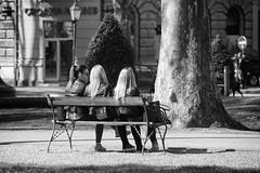 0337 Beauties Of Zagreb (Hrvoje Simich - gaZZda) Tags: street city girls bench hair back nikon croatia zagreb beauties nikkor283003556 nikond750 gazzda hrvojesimich