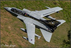 Marham-37 Goldstar-7 (simon_x_george) Tags: 2016lfa7 tornado gr4 panavia raf marham low level lfa7 military special tail 31sqn aviation goldstars