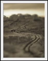 wasteland track (Andrew C Wallace) Tags: road sepia lensbaby landscape ir track mud australia victoria dirt infrared hillside grasslands wasteland shallowdof m43 campbellfield nikon50mmf14 microfourthirds tilttransformer olympusomdem5