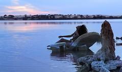 {New on TheGlobalGirl.com} Adrre Amellal (Part 2) http://ift.tt/27ZgF9L (THE GLOBAL GIRL) Tags: globalgirl globalgirlndoema siwaoasis siwa desert libyandesert libya egypt oasis theglobalgirlcom travel wanderlust africa northafrica theglobalgirl siwalake saltlake lake lifestyle theglobalgirllifestyle ndoema