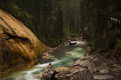 Johnston Creek, Banff National Park (synaesthesia24) Tags: longexposure trees summer canada nature rain creek forest river landscape stream hiking alberta banff rainfall banffnationalpark johnstoncanyon johnstoncreek