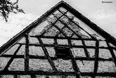 Fachwerk # 023 # Nikon F3 - Agfa APX100 - 2013 (irisisopen f/8light) Tags: bw white black analog nikon f sw 100 f3 agfa schwarzweiss apx irisisopen
