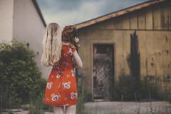 (Flimmy) Tags: blue red summer dog storm cute green abandoned floral june clouds brewing canon dark 50mm weeds dress garage longhair windy stormy dachshund wiener blonde quarry wienerdog reddress darkclouds floraldress doxie brewingstorm 50mmf12 shortdress 5dmarkii canon5dmarkii