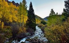 A Creek Flows by in the Mountains of Colorado (thor_mark ) Tags: trees mountains nature creek sunrise colorado unitedstates evergreen blueskies portfolio aspen day8 yellowleaves hillsides whiterivernationalforest maroonbellssnowmasswilderness lookingnorth project365 colorefexpro sieversmountain elkmountains marooncreekvalley mountainsindistance absolutelystunningscapes westmarooncreek nearsunrise nikond800e sieversmountainsouth mountainsoffindistance capturenx2edited hillsideoftrees marooncreektrail sunlightonpeaks