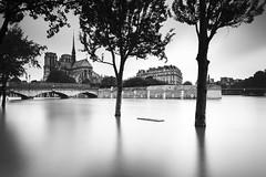 Qui l'eut cru(e)? (PLF Photographie) Tags: long exposure exposition longue noir blanc black white inondation paris france crue notredame monument architecture