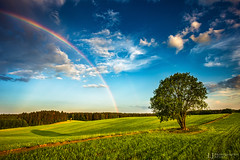 Evening rainbow (Lukjonis) Tags: ifttt 500px nature landscape light evening unexpected blue sky tree composition amazing colors sharp awesome canon photography love landscapes lithuania europe yellow green