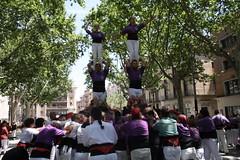 IMG_4598 (Colla Castellera de Figueres) Tags: de towers human sant pere castellers figueres pla pilars olot 2016 colla castells lestany xerrics actuacio gavarres castellera 2p5 7d7 5d7 3d7a esperxats picapolls