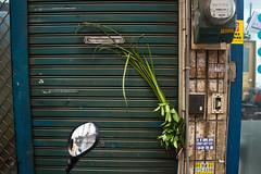 IMG_2363 (rafm0913) Tags: 桃園 2016 端午 菜市場 艾草 大湳