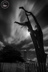 Dark Night (www.35mmNegative.com(On a Break, Catchin) Tags: california bw lighthouse white black night clouds dark point landscape photography nikon pigeon fullmoon area moonstar lightstation pascadero hazarika sfaby d800e www35mmnegativecom reetom