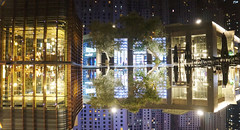 reflection (johnny eighto) Tags: dubai refelctions trees reflections evening confusing