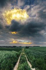 Doomsday (kubaszymik) Tags: sunset orange storm green film grass analog canon high dynamic cloudy dusk poland stormy range thunder hdr silesia gliwice skyporn vsco