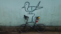 Roadmaster (Bangkok Birds) Tags: bicycle roadmaster