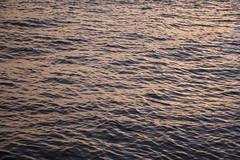 Tejo  (xanocaa) Tags: rio tejo river water reflection sunset sea ocean soft pale glow waves sun sky color september 2015 pink orange blue black white yellow green vintage alexandra fernandes leiria marinha grande portugal lisbon lisboa terreiro do pao summer autumn fall travel traveler traveling trip holiday vacation visit visitlisbon visitportugal europe europa eu visiteurope viagem landscape paisagem gua mar oceano pordosol canon eos 60d amarelo laranja azul rosa purple setembro melancholy melancolia memory memria memories past