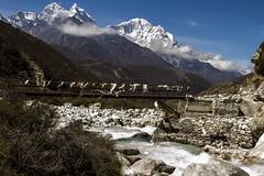 Bridge across forever (Adept Photography) Tags: nepal stupa monastery nepalese yaks everest himalayas 2016 tengboche stupas