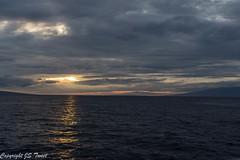 IMG_7090 (JSTweet) Tags: dinnercruise lahaina maui sunset