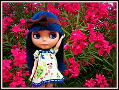 Blythe Physical Challenge #80: Flower Power!