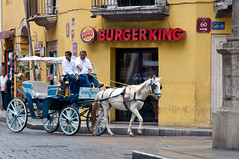 Old Meets New World in Mexico (terbeck) Tags: street horse mexico coach carriage fastfood kutsche mexican burgerking merida pferd mexiko strase calle60 horsebuddy terbeck strasenszene