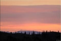 Paekakariki sunset (bob_katt) Tags: trees sunset newzealand sky cloud colour weather silhouette canon coast natural norfolk northisland southisland aotearoa wonders kapiti paraparaumu paekakariki 500d