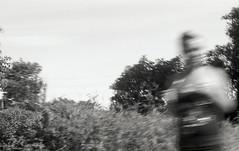 Agfa APX 25_test (Max Miedinger) Tags: blackandwhite film analog blackwhite minolta milano 25 agfa expired apx bianconero minoltasrt101 biancoenero analogica vigevano pellicola agfaapx25 scaduto