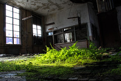 the grass rug (Kamil Dziedzina Photos) Tags: apocalypse weathered abandonedbuilding naturewins beautifuldecay humanvsnature abandonedamerica ruinporn urbexusa americanurbex