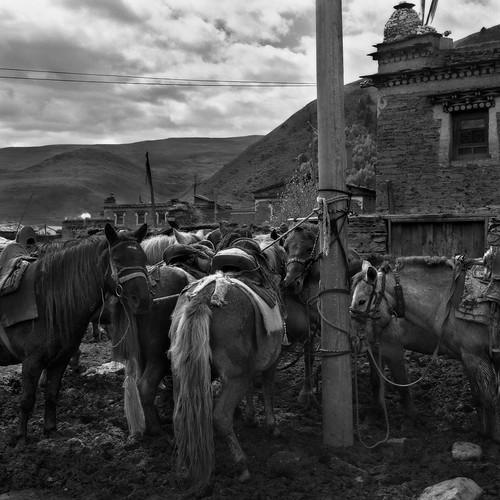 tibet1999_61