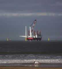 Windfarm Rig (trev.pix) Tags: rig windfarm redcar teesport