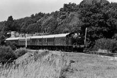 6695, GWR 56XX class 0-6-2T, Swanage Railway, 1st August 2013 (OG47) Tags: film train blackwhite railway locomotive pentaxmesuper steamengine steamtrain tankengine gwr 6695 swanagerailway railwaylocomotive uksteam 56xx 062t fomapan100asa smcpentaxm80200mmf45