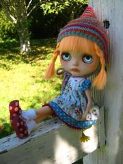 IMG_8708...Sweet Swiss Miss
