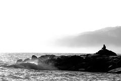 un molo di Zoagli, liguria, novembre 2011 (gionata galloni) Tags: blackandwhite italy man monochrome fog dock italia mare uomo nebbia molo horizons orizzonti zoagli
