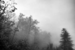 lightning # 14 (UBU ♛) Tags: blancoynegro water blackwhite noiretblanc blues nebbia biancoenero fulmini blunotte bluacqua ©ubu blutristezza unamusicaintesta landscapeinblues bluubu luciombreepiccolicristalli bluabete
