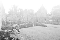 (.Lianne) Tags: trees light sky blackandwhite bw mist castle abandoned fog photography nikon ruin gradient washedout d3100