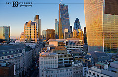 City of London New Skyline (david gutierrez [ www.davidgutierrez.co.uk ]) Tags: new uk blue light sunset sky urban london art monument glass skyline architecture modern buildings evening design glow cityscape view skyscrapers contemporary steel structure normanfoster rogers gherkin lloyd