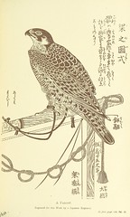 Image taken from page 159 of 'Japan: its history, traditions, and religions. With the narrative of a visit in 1879 ... With ... illustrations'