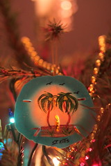 50/52 in 2013 - Happy Holidays - The one that started it all (lorainedicerbo) Tags: christmas holiday tree memories decoration ornaments happyholidays 5052in2013
