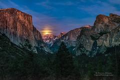 Full Moon over Yosemite National Park (Darvin Atkeson) Tags: moon waterfall nationalpark glow fullmoon moonrise valley yosemite bridalveil elcapitan darvin atkeson darv liquidmoonlightcom lynneal