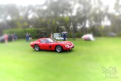 1962 Ferrari 250 GTO at Amelia Island 2012 (gswetsky) Tags: sports island italian european antique ferrari gto amelia concours 250 delegance