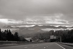 Up High (dorameulman) Tags: blackandwhite bw usa mist mountain fog landscape drive us nc northcarolina atmospheric roadshot dorameulman