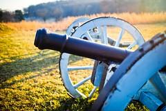 cannon (jilim) Tags: dof bokeh voigtlander olympus cannon revolutionarywar valleyforge f095 em1 mft 175mm
