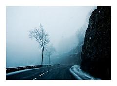 jour de neige (6) (Marie Hacene) Tags: mountain tree car voiture route jura neige arbre