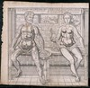 Male and female anatomy (Thomas Fisher Rare Book Library, UofT) Tags: fetus aorta bladder abdomen fallopiantubes anatomiathomasfisherrarebooklibraryuniversityoftorontomedicinejasonahannahacademyofmedicineplatesillustrationanatomy