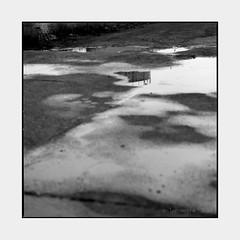 - (Polar Noire) Tags: hasselblad500cm 120 mittelformat mediumformat 6x6 analog film hasselblad photographieargentique pellicule polarnoire