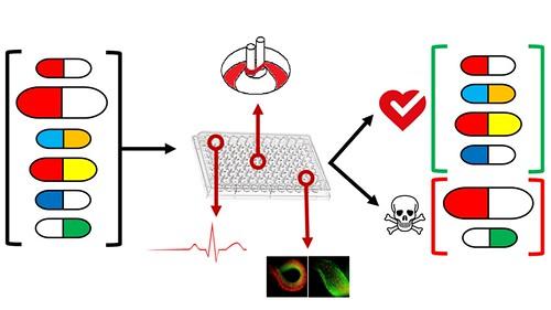 0564-01-10 Peter Zandstra Drug Screen Schematic