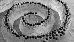Coburger Glaspreis - IMG_5029 (Andreas Helke) Tags: sculpture art glass canon germany deutschland coburg europa europe kunst crop dslr popular 169 canoneos350d glas twa candreashelke landkreiscoburg haslargesize donothide popularold 9x16l shownbig