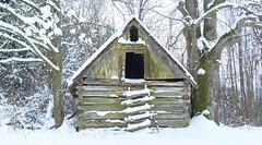 Snowed barn