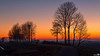 Morning gold (BraCom (Bram)) Tags: road morning trees mist holland netherlands fog sunrise canon bomen ditch widescreen nederland silhouettes dijk polder 169 dike countryroad ochtend weg sloot zuidholland goereeoverflakkee landweg southholland zonsopkomst greatphotographers silhouetten canonef24105mm bracom stadaanhetharingvliet canoneos5dmkiii bramvanbroekhoven
