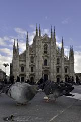 Piazza del Duomo (Milano) (Alex 200 Reflex) Tags: street nikon milano nikkor 2470 d810 digitalex alessandromosca alessandroluigimosca moscaalessandro alex200 alex200reflex